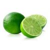 Mexico Limes