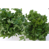 Parsley (specifiy Regular or Italian)