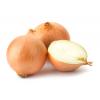 Organic Local Yellow Onions