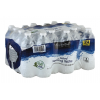 Essential Everyday Natural Spring Water, 24 ct