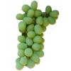 Sugroane Grapes