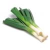 Organic Leeks
