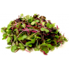 Microgreens Power Mix Local Ea
