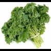 Organic Kale Green