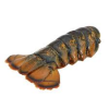 WARM WATER LOBSTER TAIL 4 OZ