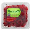 Driscoll's Organic Raspberries, 6 oz